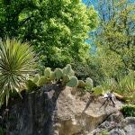 Jardins de la Roque Gageac